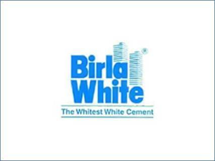 birla white wall care putty